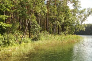 vandens apsauga IMG_4676